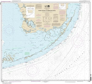 Picture of 11450 - Florida Keys - Fowey Rocks To American Shoal Nautical Chart
