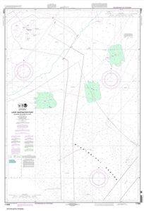 Picture of 11359 - Loop Deepwater Port - Louisiana Offshore Oil Port Nautical Chart