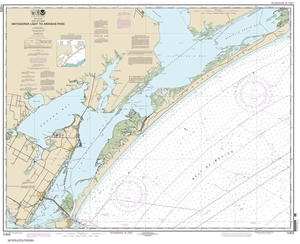 Picture of 11313 - Matagorda Light To Aransas Pass Nautical Chart