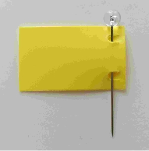 Picture of Yellow Flag