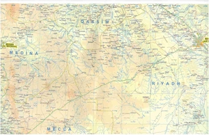 Picture of International Travel Maps - Saudi Arabia
