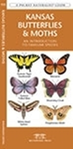 Picture of Kansas Butterflies and Moths
