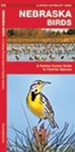 Picture of Nebraska Birds